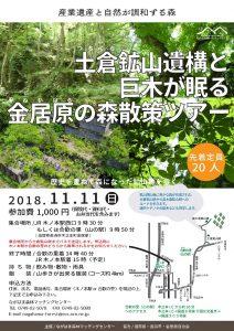 土倉鉱山遺構と巨木が眠る金居原の森散策ツアー @ 土倉鉱山跡 | 長浜市 | 滋賀県 | 日本