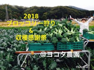 2018 ブロッコリー狩り&収穫感謝祭 @ ヨコタ農園 | 長浜市 | 滋賀県 | 日本