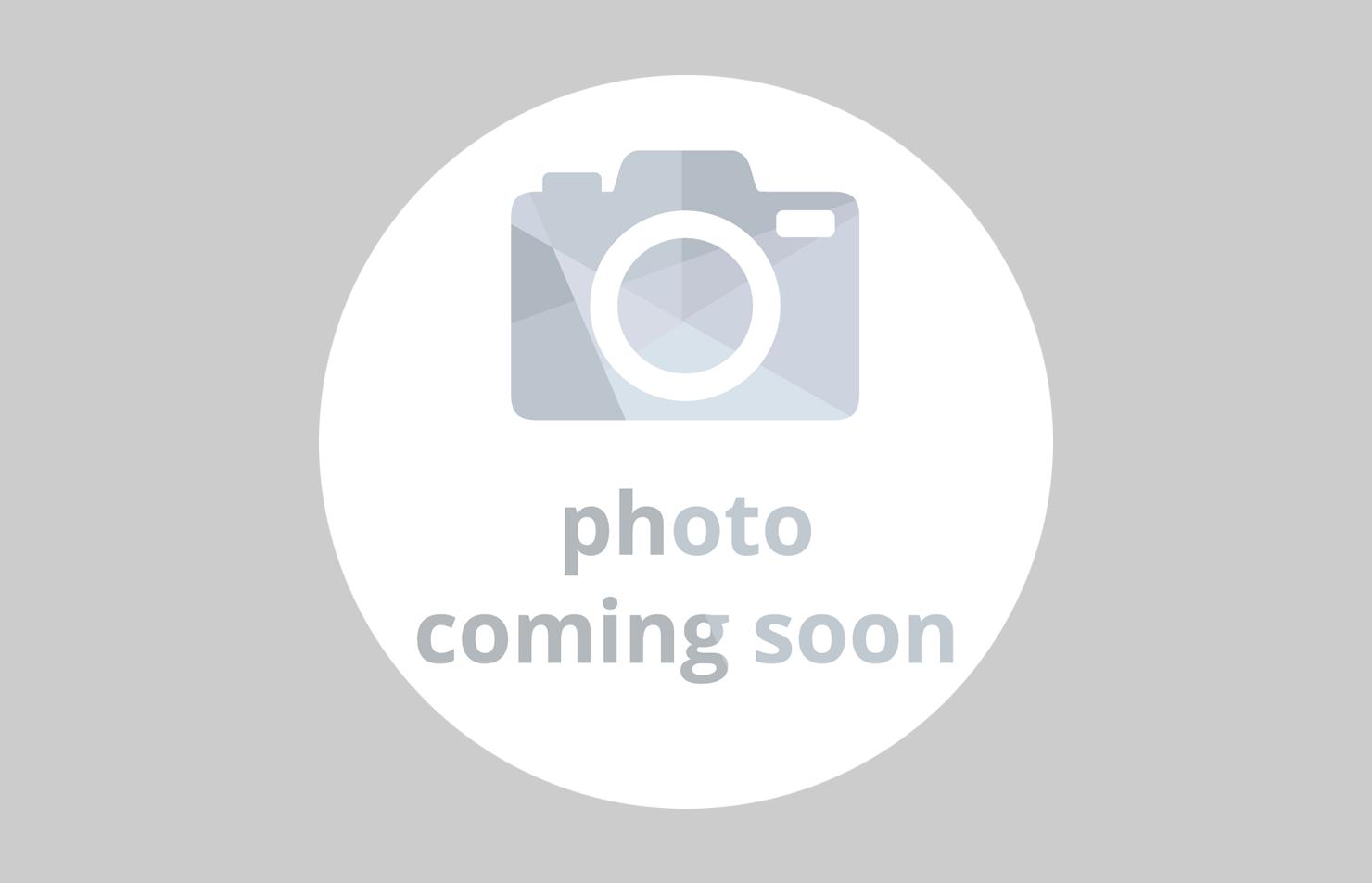 小谷城戦国まつりメイン画像